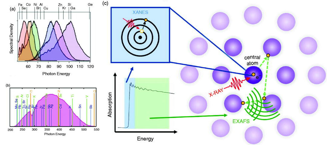 Attosecond state-resolved carrier motion in quantum materials probed by soft x-ray XANES